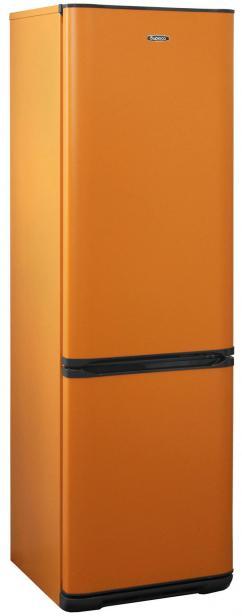 Фото Холодильник Бирюса T360NF