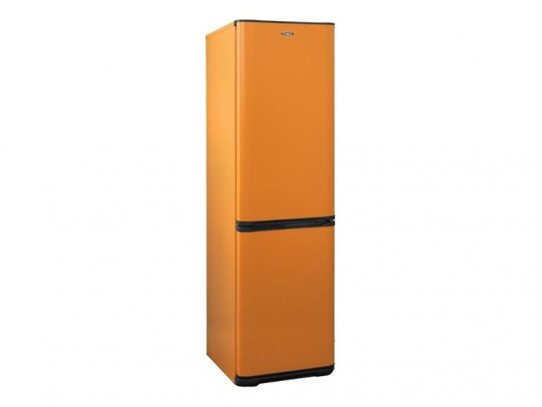 Фото Холодильник Бирюса T380NF