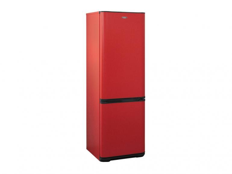 Фото Холодильник Бирюса H627, красный